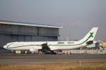 VIPERさんが、羽田空港で撮影したエアXチャーター A340-312の航空フォト(写真)