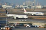 さくらの城南山。さんが、羽田空港で撮影した全日空 777-281の航空フォト(写真)