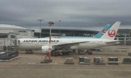 Lovely-Akiさんが、シドニー国際空港で撮影した日本航空 777-246/ERの航空フォト(飛行機 写真・画像)