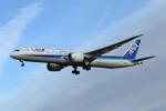 prado120さんが、成田国際空港で撮影した全日空 787-9の航空フォト(写真)