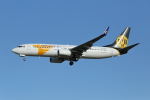 prado120さんが、成田国際空港で撮影したMIATモンゴル航空 737-8SHの航空フォト(写真)