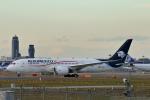 prado120さんが、成田国際空港で撮影したアエロメヒコ航空 787-8 Dreamlinerの航空フォト(写真)