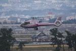 kumagorouさんが、仙台空港で撮影した日本法人所有 EC130B4の航空フォト(飛行機 写真・画像)