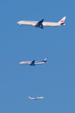 YAMMARさんが、成田国際空港で撮影した日本航空 777-346/ERの航空フォト(写真)