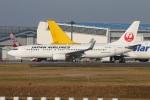たみぃさんが、成田国際空港で撮影した日本航空 737-846の航空フォト(写真)