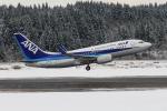 西風さんが、大館能代空港で撮影した全日空 737-781の航空フォト(写真)