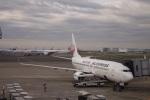 nobu2000さんが、羽田空港で撮影した日本航空 737-846の航空フォト(写真)