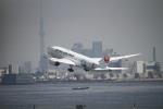 AXT747HNDさんが、羽田空港で撮影した日本航空 787-8 Dreamlinerの航空フォト(写真)