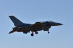 ワイエスさんが、新田原基地で撮影したアメリカ空軍 F-16CM-50-CF Fighting Falconの航空フォト(写真)