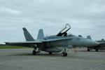 おかげ犬さんが、三沢飛行場で撮影したアメリカ海兵隊 F/A-18C Hornetの航空フォト(写真)