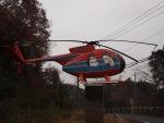 SK51Aさんが、成田国際空港で撮影した新日本ヘリコプター 369HSの航空フォト(写真)