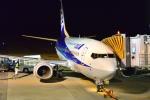md11jbirdさんが、熊本空港で撮影したANAウイングス 737-54Kの航空フォト(写真)