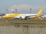 @たかひろさんが、成田国際空港で撮影したスクート 787-9の航空フォト(写真)
