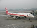 flyingmasさんが、成都双流国際空港で撮影した四川航空 A321-231の航空フォト(写真)