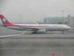 flyingmasさんが、成都双流国際空港で撮影した四川航空 A330-343Eの航空フォト(写真)