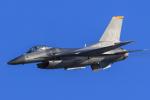 norimotoさんが、新田原基地で撮影したアメリカ空軍 F-16CM-50-CF Fighting Falconの航空フォト(写真)