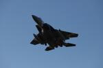 yuuki1214さんが、小松空港で撮影した航空自衛隊 F-15DJ Eagleの航空フォト(写真)