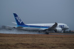 FRTさんが、松山空港で撮影した全日空 787-8 Dreamlinerの航空フォト(写真)