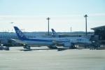 てつさんが、成田国際空港で撮影した全日空 787-9の航空フォト(写真)