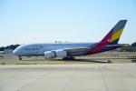 てつさんが、成田国際空港で撮影したアシアナ航空 A380-841の航空フォト(写真)