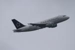twining07さんが、ロンドン・ヒースロー空港で撮影したクロアチア航空 A319-112の航空フォト(写真)