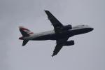 twining07さんが、ロンドン・ヒースロー空港で撮影したブリティッシュ・エアウェイズ A319-131の航空フォト(写真)
