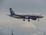 JA655Jさんが、米子空港で撮影した全日空 A320-211の航空フォト(写真)