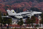 Flankerさんが、横田基地で撮影したアメリカ海兵隊 F/A-18D Hornetの航空フォト(写真)
