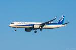 ぱん_くまさんが、羽田空港で撮影した全日空 A321-272Nの航空フォト(写真)