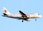 voyagerさんが、羽田空港で撮影したセネガル政府 A319-115CJの航空フォト(飛行機 写真・画像)