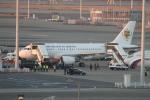ジャンクさんが、羽田空港で撮影したセネガル政府 A319-115CJの航空フォト(写真)