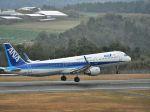ナナオさんが、石見空港で撮影した全日空 A321-211の航空フォト(写真)