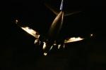furuさんが、那覇空港で撮影したANAウイングス 737-5L9の航空フォト(写真)