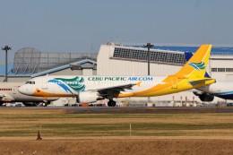 YASKYさんが、成田国際空港で撮影したセブパシフィック航空 A320-214の航空フォト(飛行機 写真・画像)