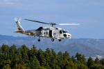 sepia2016さんが、峯岡山分屯基地で撮影した海上自衛隊 SH-60Kの航空フォト(写真)