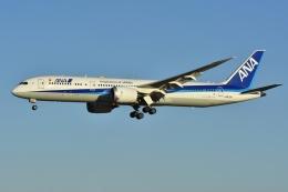 よしポンさんが、成田国際空港で撮影した全日空 787-9の航空フォト(写真)
