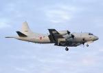じーく。さんが、那覇空港で撮影した海上自衛隊 P-3Cの航空フォト(写真)