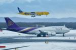 パンダさんが、新千歳空港で撮影したタイ国際航空 747-4D7の航空フォト(飛行機 写真・画像)