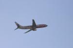 m_aereo_iさんが、福岡空港で撮影した中国国際航空 737-86Nの航空フォト(写真)