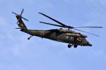 ひこ☆さんが、那覇空港で撮影した陸上自衛隊 UH-60JAの航空フォト(写真)