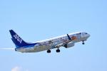 ひこ☆さんが、那覇空港で撮影した全日空 737-881の航空フォト(写真)