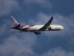 kikiさんが、成田国際空港で撮影したタイ国際航空 777-3AL/ERの航空フォト(写真)