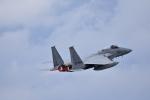 ひこ☆さんが、那覇空港で撮影した航空自衛隊 F-15J Eagleの航空フォト(写真)