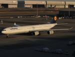 さゆりんごさんが、羽田空港で撮影したルフトハンザドイツ航空 A340-642の航空フォト(写真)