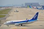 toyoquitoさんが、関西国際空港で撮影した全日空 737-781の航空フォト(写真)