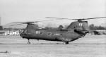 ハミングバードさんが、名古屋飛行場で撮影したアメリカ海軍 CH-46Dの航空フォト(写真)