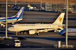ちかぼーさんが、羽田空港で撮影したセネガル政府 A319-115CJの航空フォト(写真)