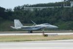 SuneKumaさんが、那覇空港で撮影した航空自衛隊 F-15J Eagleの航空フォト(写真)