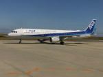 kumagorouさんが、徳島空港で撮影した全日空 A321-211の航空フォト(飛行機 写真・画像)