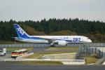 てつさんが、成田国際空港で撮影した全日空 787-8 Dreamlinerの航空フォト(写真)